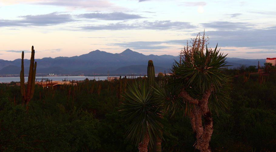 Live in Baja's Rustic Beauty